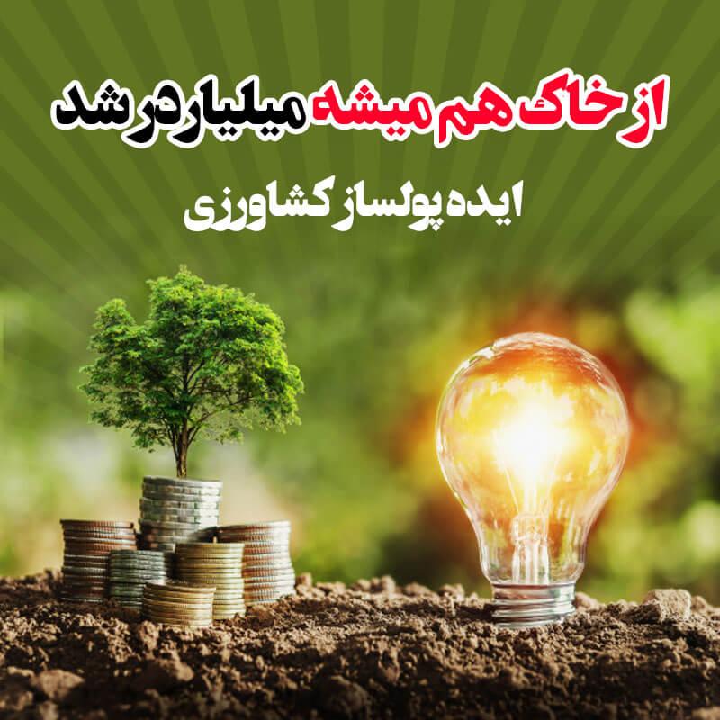 ایده پولساز کشاورزی